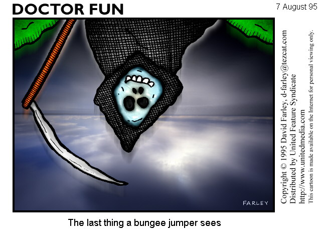Dr Fun - The last thing a bungee jumper sees